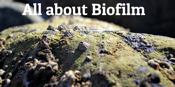 Biofilm plaque