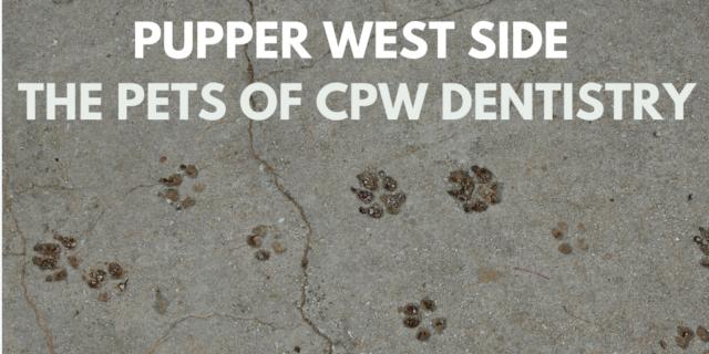 Pupper West Side